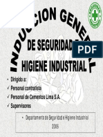 Induc. de Seguridad Cemento Lima