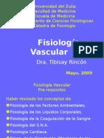 Fisiologia VASCULAR