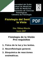 Fisiologia de La Vision
