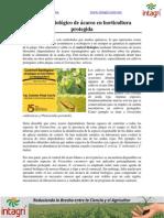 Control Biologico de Acaros en Horticultura Protegida