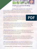 Twelve Principles of Conscious Breathing