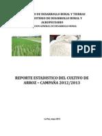 Reporte Evaluacion Arroz Santa Cruz 2013
