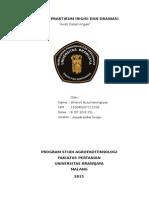 Laporan Praktikum Irdas Audit