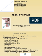 TRAQUEAOSTOMIA