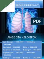 Akut Lung Oedema (Alo) (2)
