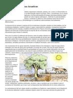 Tipos De Ecosistemas Acuaticos