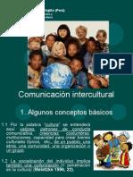 Comunicacion Intecultural Zierer - Copia