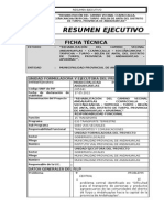Resumen Ejecutivo.doc