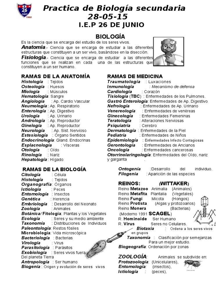 Contemporáneo Pruebas De La Anatomía Y Fisiología De Los Huesos De ...
