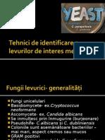 Tehnici de Identificare a Levurilor de Interes Medical