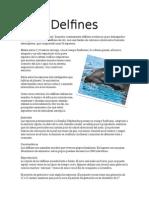 Delfines.docx