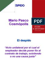 Despido - Dr. Cosmopolis.ppt