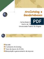 Aula 02 - ArcCatolog e Geodatabases