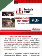 UNIDAD GERENCIAL DE PROYECTOS - TRABAJA PERU 2015 (ZONA NORTE DEL PERU)