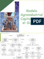 Modelo Agroindustrial Emanuel