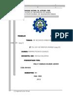 Recursos Naturales y Medio Ambiente(Normas)1