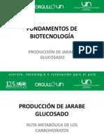 PRODUCCION-DE-JARABES-GLUCOSADOS..pdf