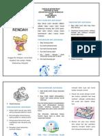 Leaflet Bblr Poli Fix