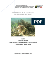 Clasificacion Taxonomica Distribucion Importancia Algas