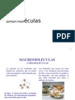 2. BIOMOLECULAS-