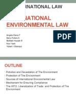 Group 7 International Environmental Law