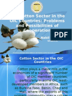 Cotton_Paper.ppt