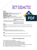 dumitru_cornelia_proiect_mem.doc
