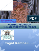 KULIAH 4 Flora Normal GI Tract