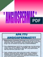 5. ANGIOSPERMAE