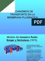 Transporte y Membrana-1