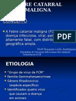 Febre Catarral Maligna Texto Para Alunos (1)