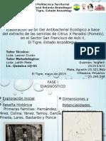 Proyecto Socio-Integrador (Diapositivas)