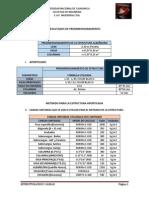 PROYECTO DE ESTRUCTURACION Y CARGAS INFORME.pdf