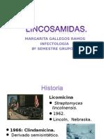 CLINDAMICINA (lincosamidas)