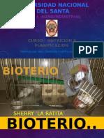 Sherry 'La Ratita'