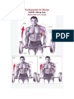Serie de Exercicios Para Aumento Muscular
