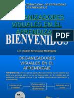 2. Organizadores Visuales