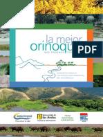 Descripcion detallas de laregion de la orinoquia en todos los campos de estudio posibles