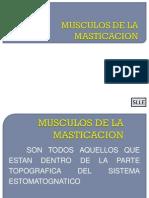 MUSCULOS DE LA MASTICACION.ppt