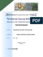 ANTIBIOGRAMA (1)