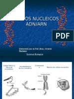 acidosnucleicos