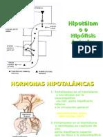 Eje Hipotalamo Hipofisario
