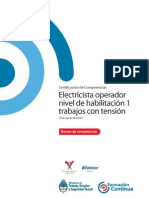 NCL ENER ELECTRICA Electricista Operador Nivel de Habilitación 1 Trabajos Con Tensión