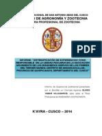 Informe de Actividades realizadas como profesional