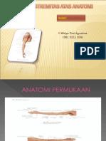 Ekstremitas Atas Anatomi Widya
