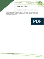 INTRODUCCION DE CLIMA KOPPEN.docx
