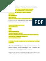 Estructura Del Informe de La Practica Profesional
