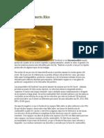 Biodiesel en Puerto