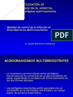 Hidalgo_MedidasControl_11_03_2008.ppt