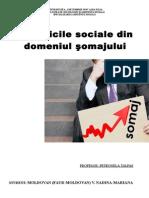 Politici Sociale Somaj - FAUR MOLDOVAN NADINA - Politica Ocuparii Fortei de Munca